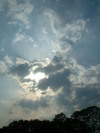 0509noyanasegawa_021