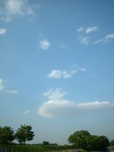 0509noyanasegawa_045