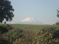 20081011_fuji2